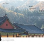 Peace & Fall Colors at Woljeongsa Temple | Korea Travel Photographer