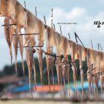 Seohaean Baeyeonsingut | Korea Editorial Photographer