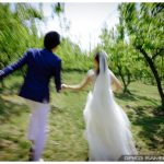 Married in an Orchard | Korea Outdoor Wedding Photographer